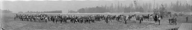 Stock parade at the Vancouver Exhibition at Hastings Park, 1915