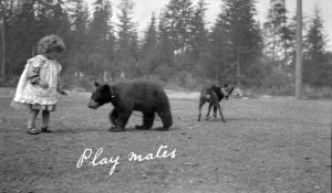 little girl with dog and bear on leash