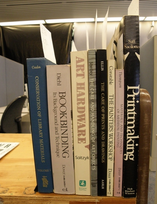 A few unlabeled conservation books. Photo by Allison Hasselfield.