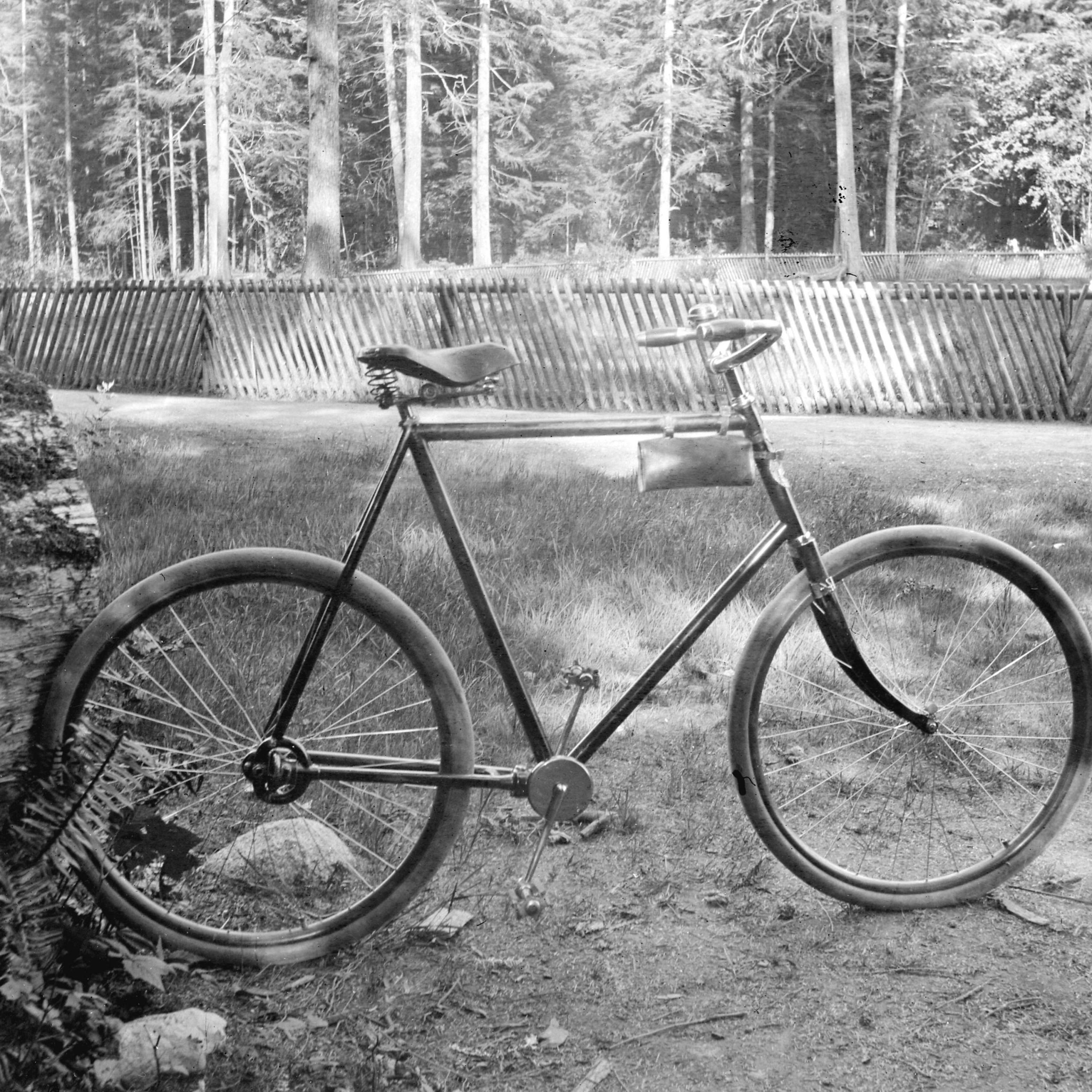 Chainless bicycle at old pond. Reference code: AM54-S4-: CVA 466-16