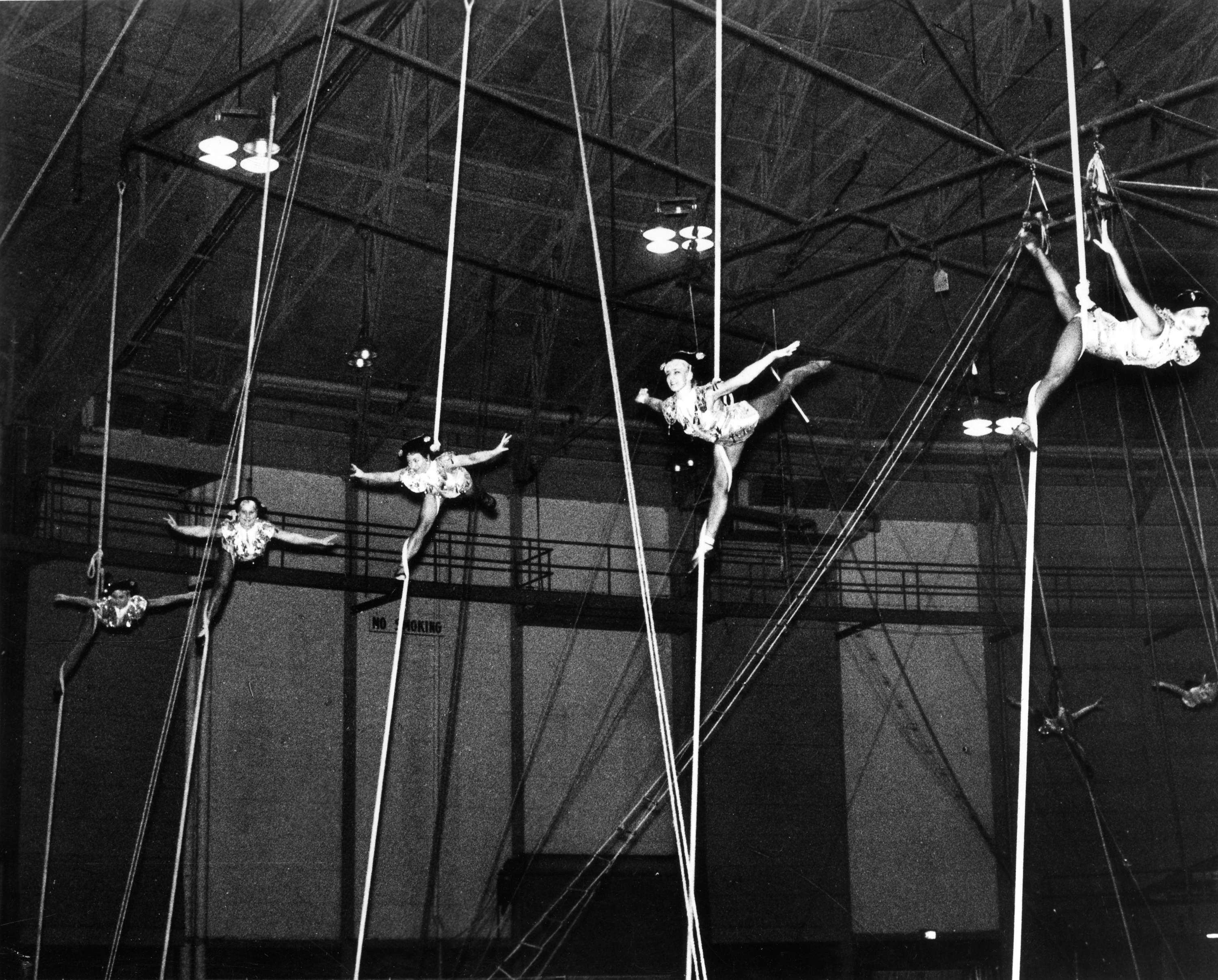 5 aerial acrobats hang perform on ropes