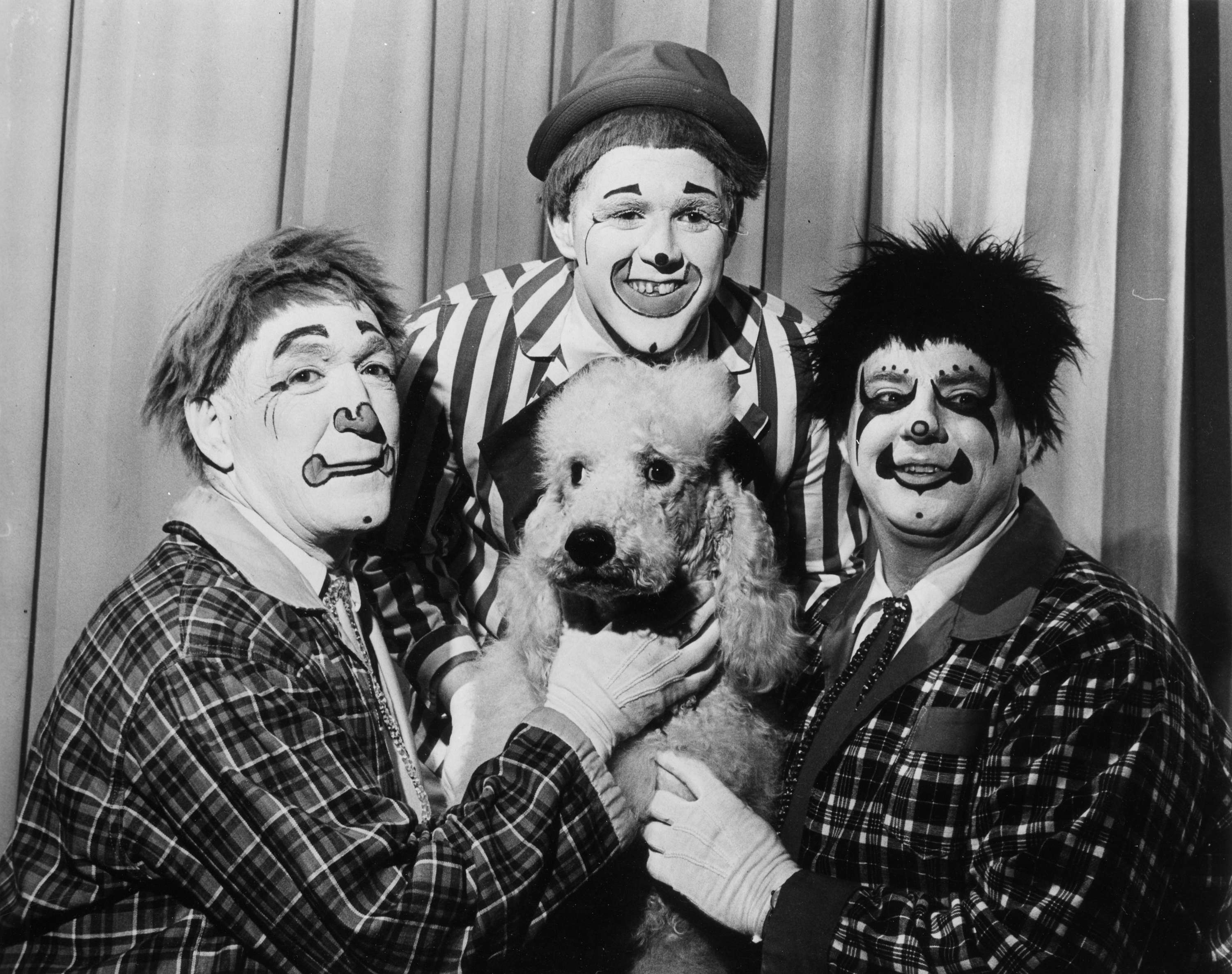 3 clowns and a dog