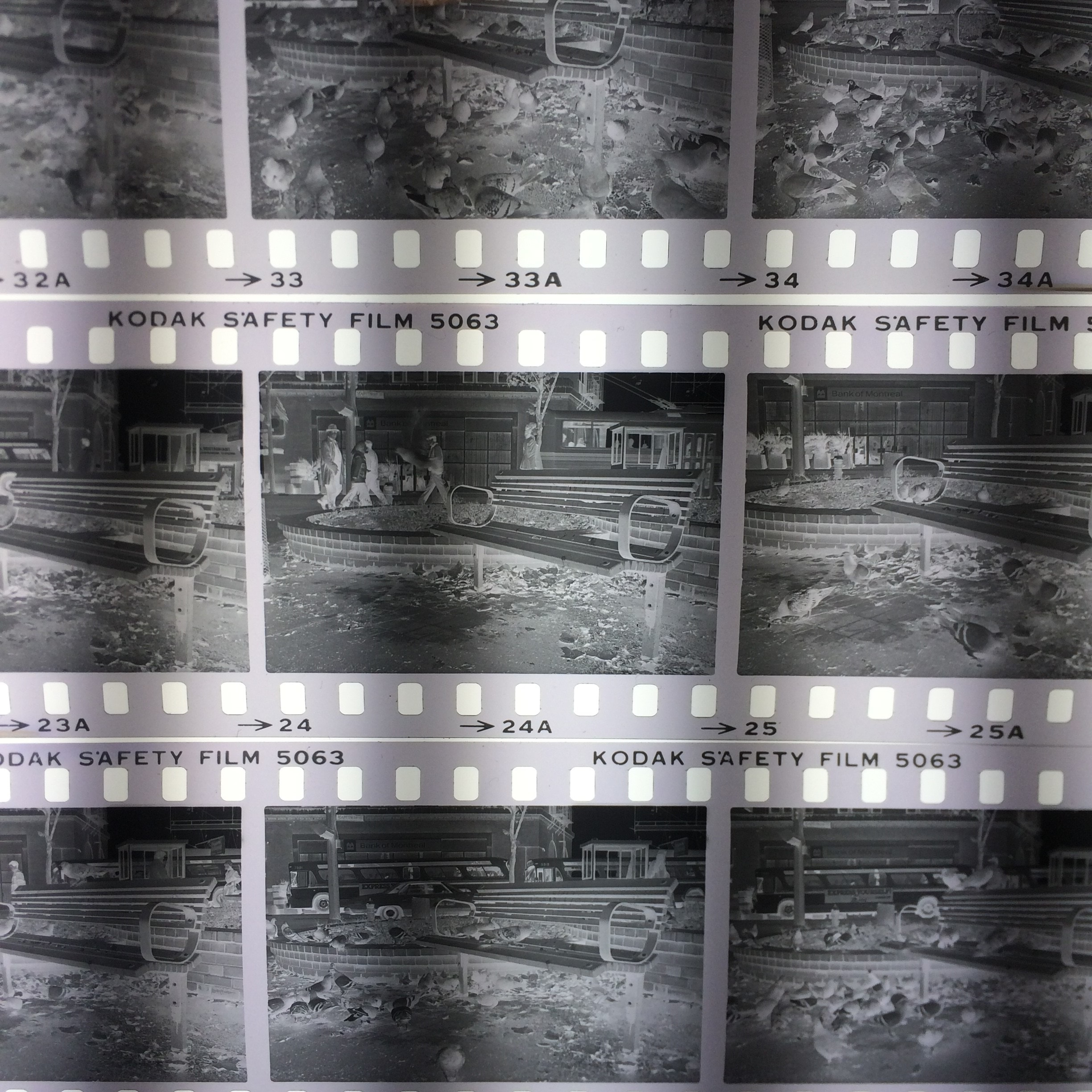 After these acetate 35mm negatives are processed, they will stored in the Archives' walk in freezer. Photo by Bronwyn Smyth