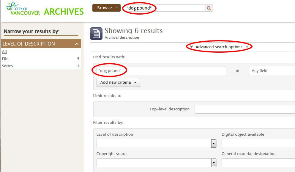 Advanced Search Options, with the search term used in Basic Search automatically entered.